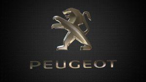 Peugeot Live Chat